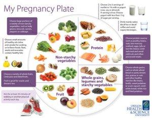 my-pregnancy-plate